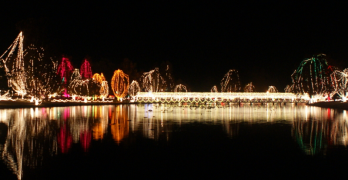 New! Dancing Bridge Lights at Chickasha Festival of Light 2012